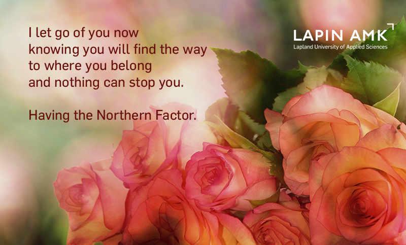 Light red roses and words Having the Northern Factor