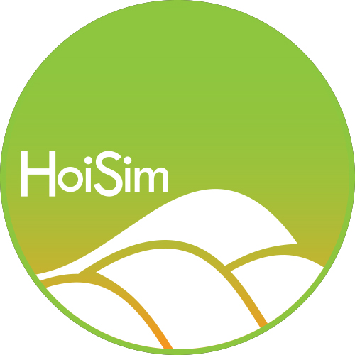 hoisim logo northern lights GRADIENT.jpg